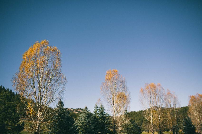 004 Evergreen Lake House Wedding Photographer