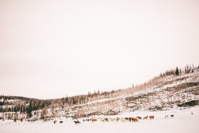 Kori Dan Engagement Steamboat Springs Vista Verde Ranch Horses Barn Snow Winter-012