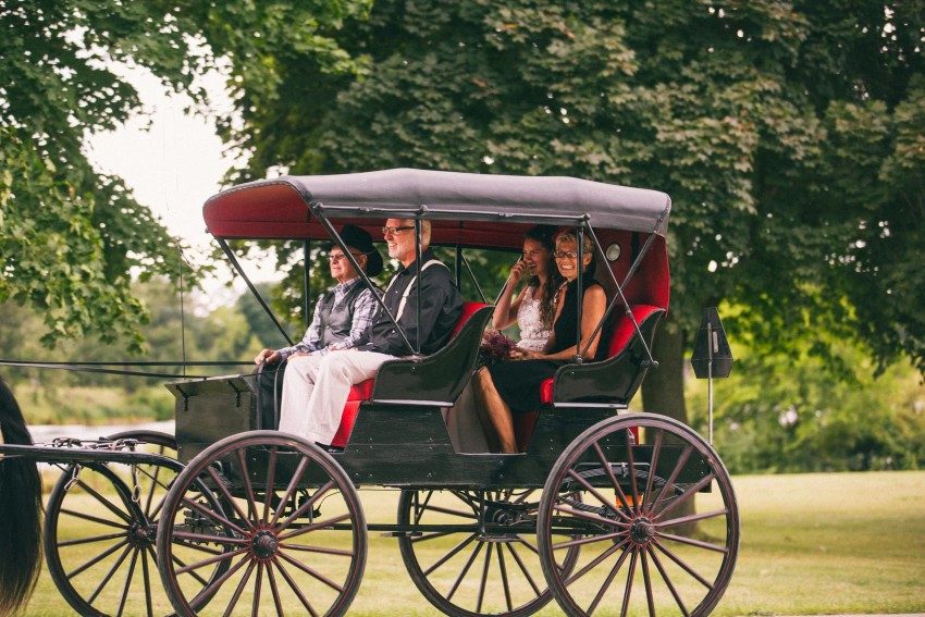 048 Mukwonago Milwaukee WI Bride Cinderealla Entrance Horse Carriage Laid Back Wedding Andrea Danny Andrea