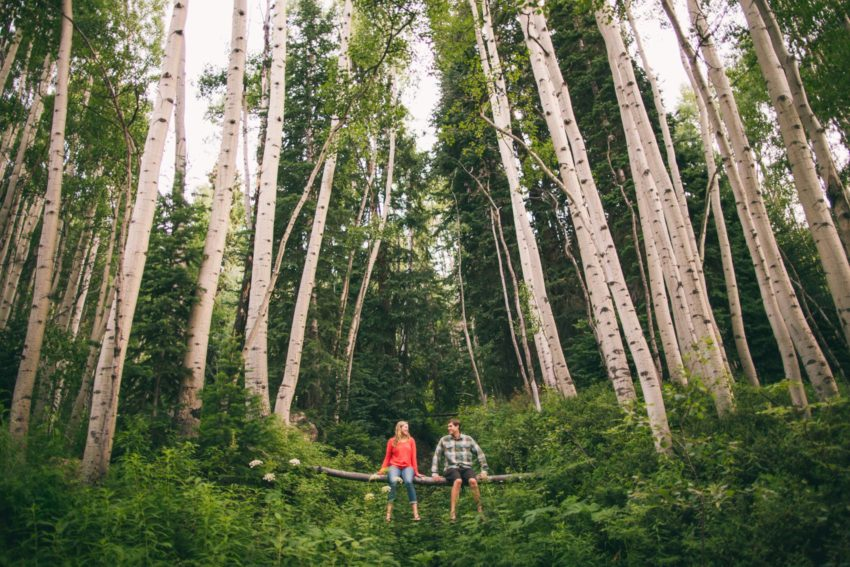 008 Crested Butte Wildflower Adventure Engagement Shoot Washington Gulch Jenna Drew